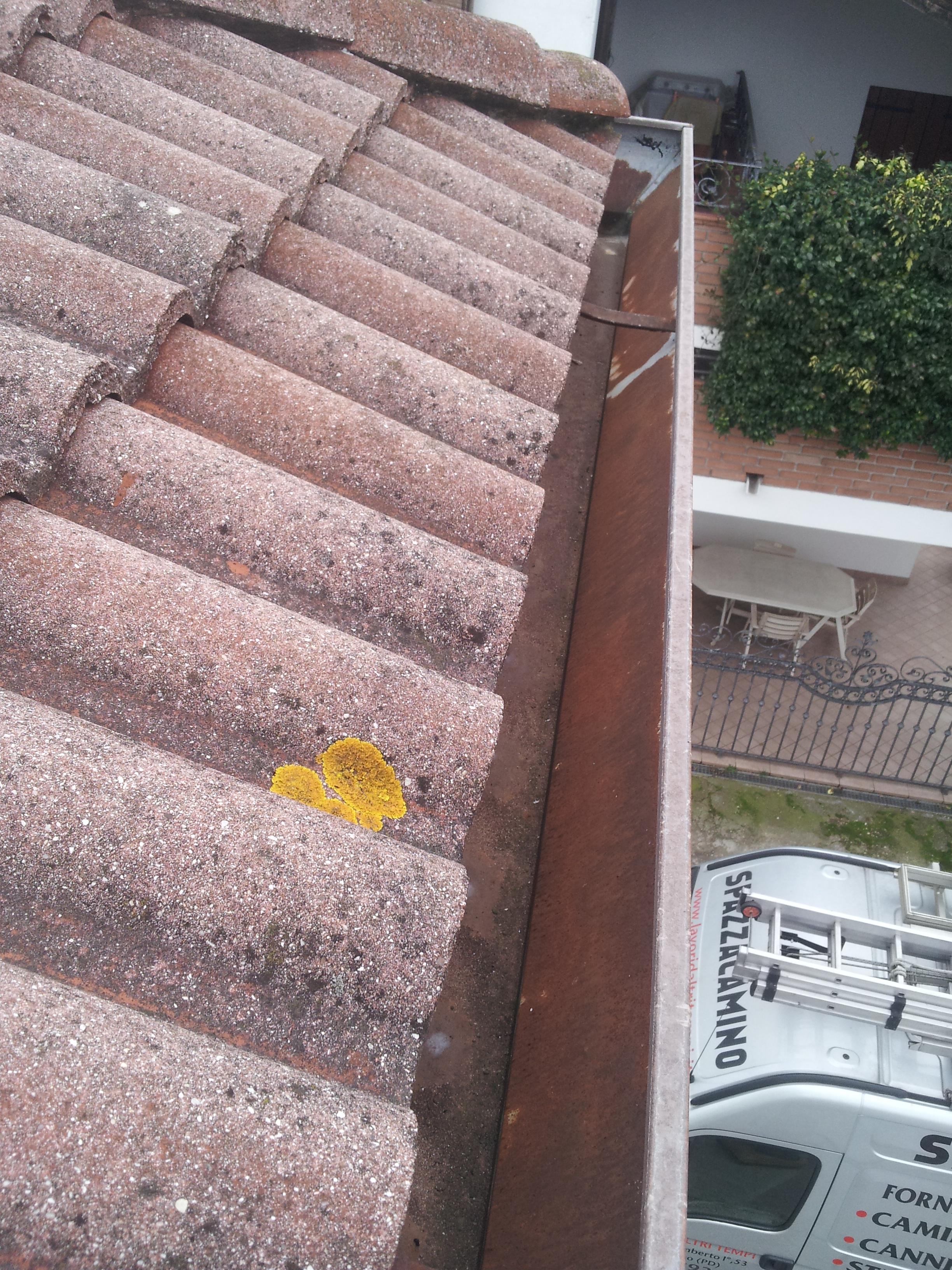 Pulizia tetti e grondaie